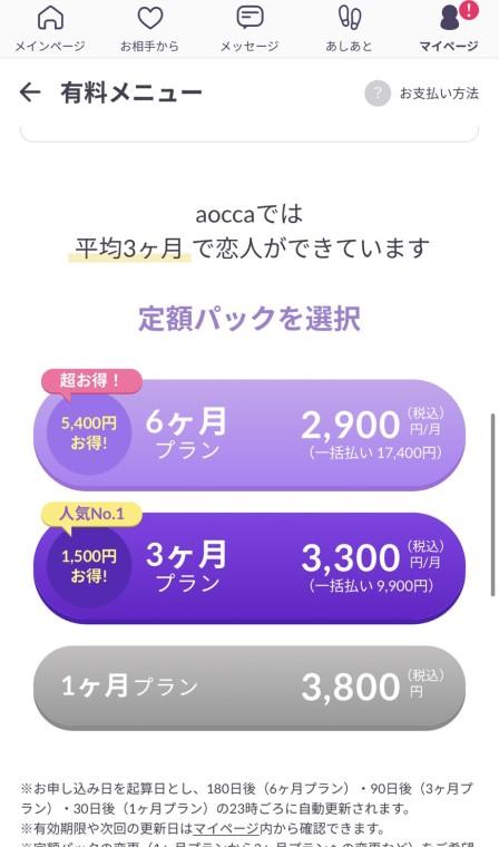 aocca(アオッカ)の料金プラン選択画面